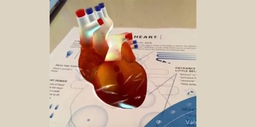 Astonishing Exploration how human heart beats through Anatomy 4D | X ...